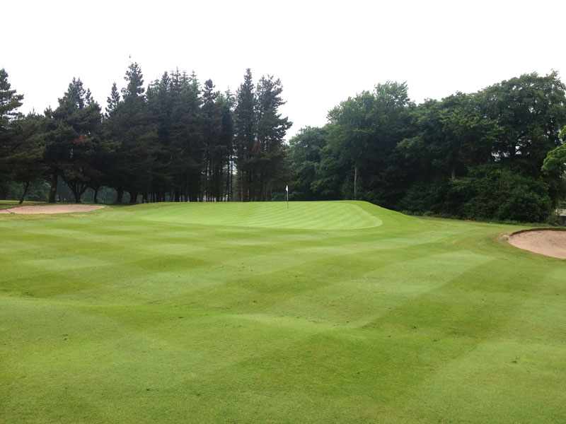 Approach to the 12th green